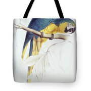 Blue And Yellow Macaw Tote Bag