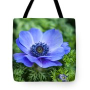 Blue Anemone. Flowers Of Holland Tote Bag