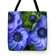 Blue Anemones. Flowers Of Holland Tote Bag