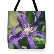 Blue Angel Clematis Close   # Tote Bag
