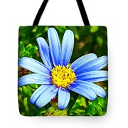 Blue Aster In Park Sierra Near Coarsegold-california   Tote Bag