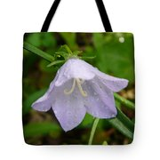 Blue Bell Flower Tote Bag