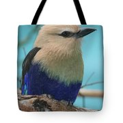 Blue-bellied Roller Tote Bag