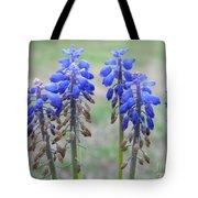 Blue Bells 2 Tote Bag