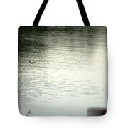 Blue Bird Over The Water...   # Tote Bag