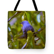 Blue Bird With A Yellow Throat Tote Bag