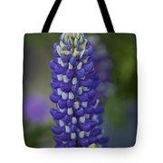 Blue Bonnet Tote Bag