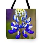 Blue Bonnets Lupinus Tote Bag