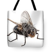 Blue Bottle Fly Species Calliphora Vomitoria Tote Bag
