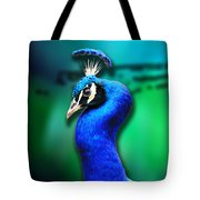Blue Boy 2 Tote Bag