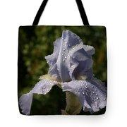 Blue Breath Tote Bag
