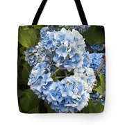 Blue Circle Tote Bag