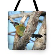 Blue-crowned Motmot Tote Bag