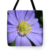 Blue Daisy Up Close Tote Bag