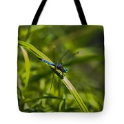 Blue Damsel Dragon Fly Tote Bag