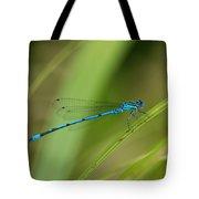 Blue Damselfly Tote Bag