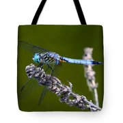 Blue Darter Tote Bag
