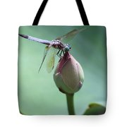Blue Dragonflies Love Lotus Buds Tote Bag by Sabrina L Ryan