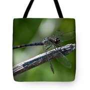 Blue Dragonfly 2 Tote Bag