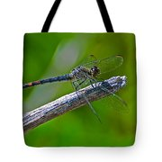 Blue Dragonfly 5 Tote Bag