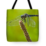 Blue Dragonfly 6 Tote Bag
