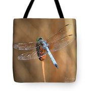 Blue Dragonfly Square Tote Bag