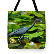 Reddish Egret Among The Lily Pads Tote Bag