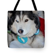 Blue Eye Brown Eye Tote Bag