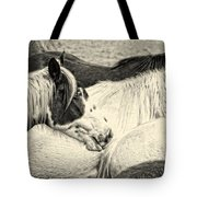 Blue Eyed Beauty Two Tote Bag