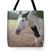 Medicine Hat Horse Tote Bag