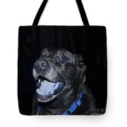 Blue Eyed Lab Smiling For The Camera Tote Bag