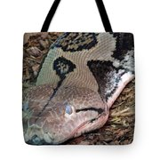Blue Eyes Snake Tote Bag