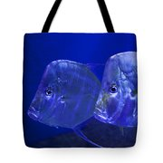 Blue Fish   #4991 Tote Bag