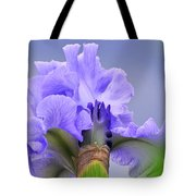 Blue Flamenco Tote Bag