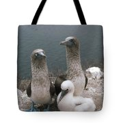 Blue-footed Booby Parents With Chick Tote Bag