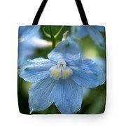 Blue Fragil Tote Bag