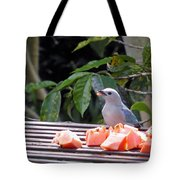 Blue-grey Tanager 1 Tote Bag