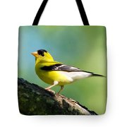 Blue Heart Goldfinch Tote Bag