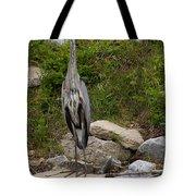 Blue Heron   #0303 Tote Bag