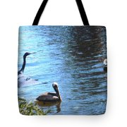 Blue Heron And Pelicans Tote Bag