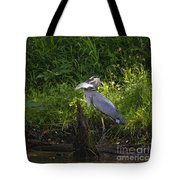 Blue Heron With A Fish-signed Tote Bag