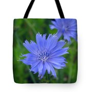 Blue Hue Hue Tote Bag