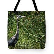 Blue In The Reeds Tote Bag