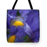 Blue Iris Close Up Tote Bag