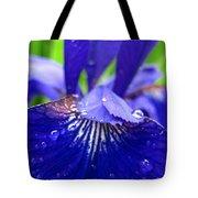 Blue Iris Rain Drops Tote Bag