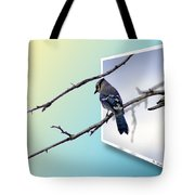 Blue Jay Branch Tote Bag