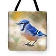 Blue Jay - Digtial Paint Tote Bag