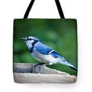 Blue Jay In Backyard Feeder Tote Bag