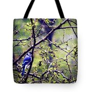 Blue Jay - Paint Effect Tote Bag