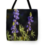 Blue Lupine  Tote Bag